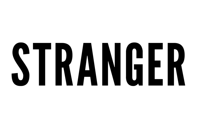 The stranger essay
