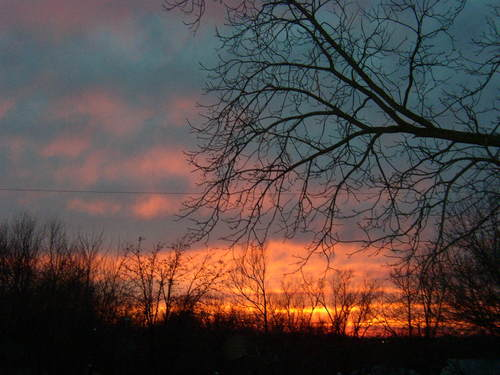 Backyard_sunset_047