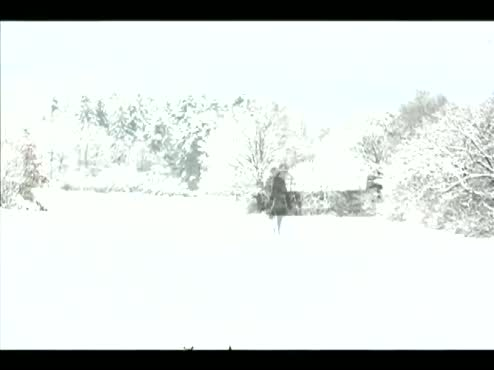 Girl Walking in the Snow (One Step Forward collab.)