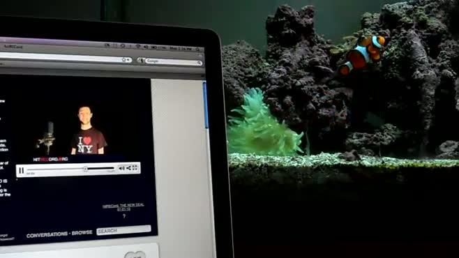 Laptop_Aquarium