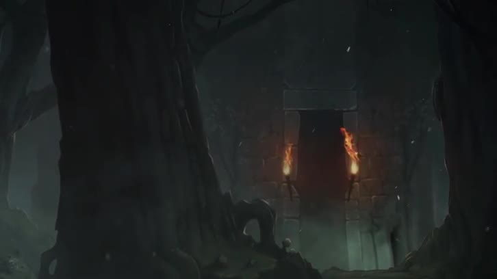 Forest Animation Test