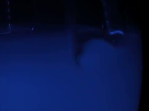 Blue Light (RAW)