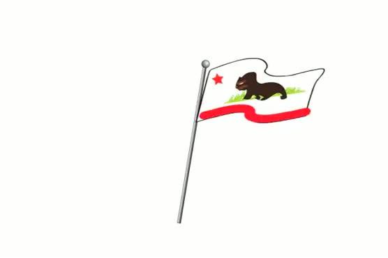 CA Flag Waving