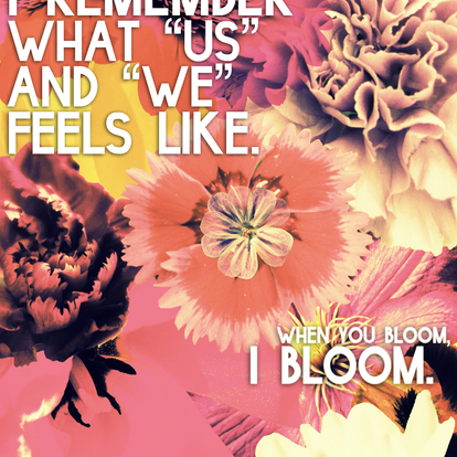 Whenyoubloom
