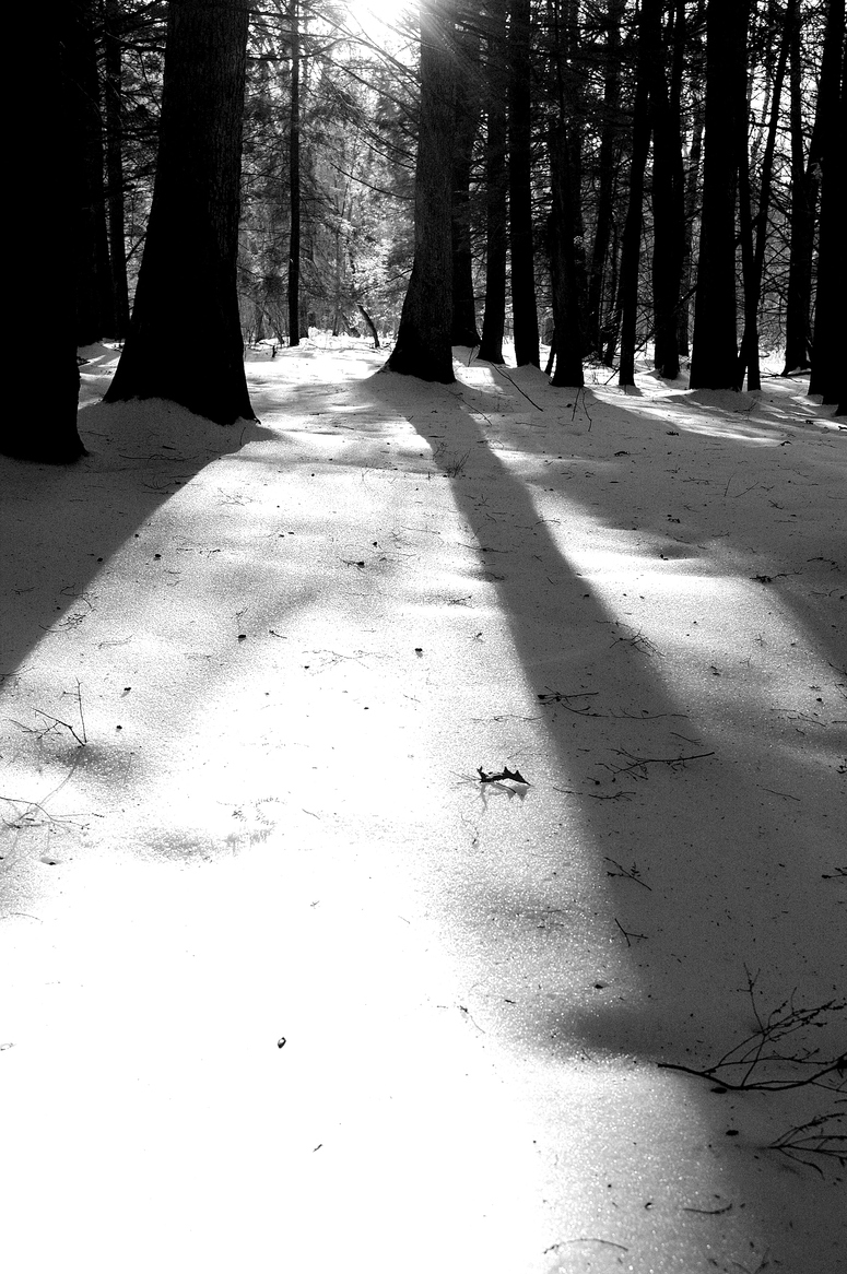 Snow_sun_shadows