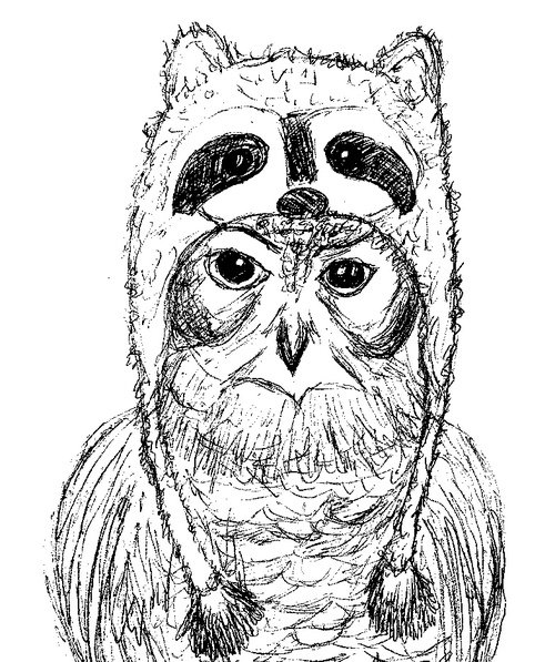 Owl-raccoon