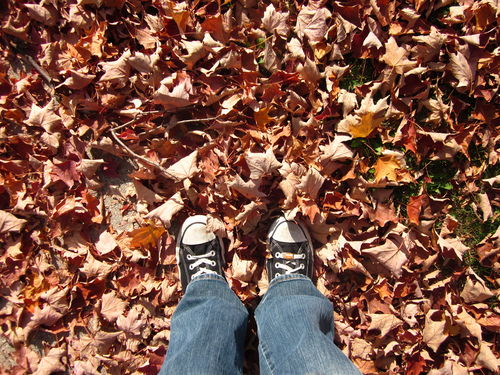Brooke-feet-chuckies-in-leaves