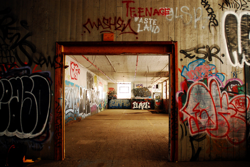 Teenage_waste_land