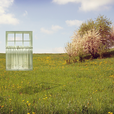 Window_in_a_field